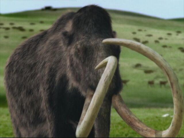 File:WWB1x6 Mammoth.jpg