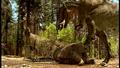 Tyrannosaurus eating.png