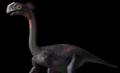 Gigantoraptor.png