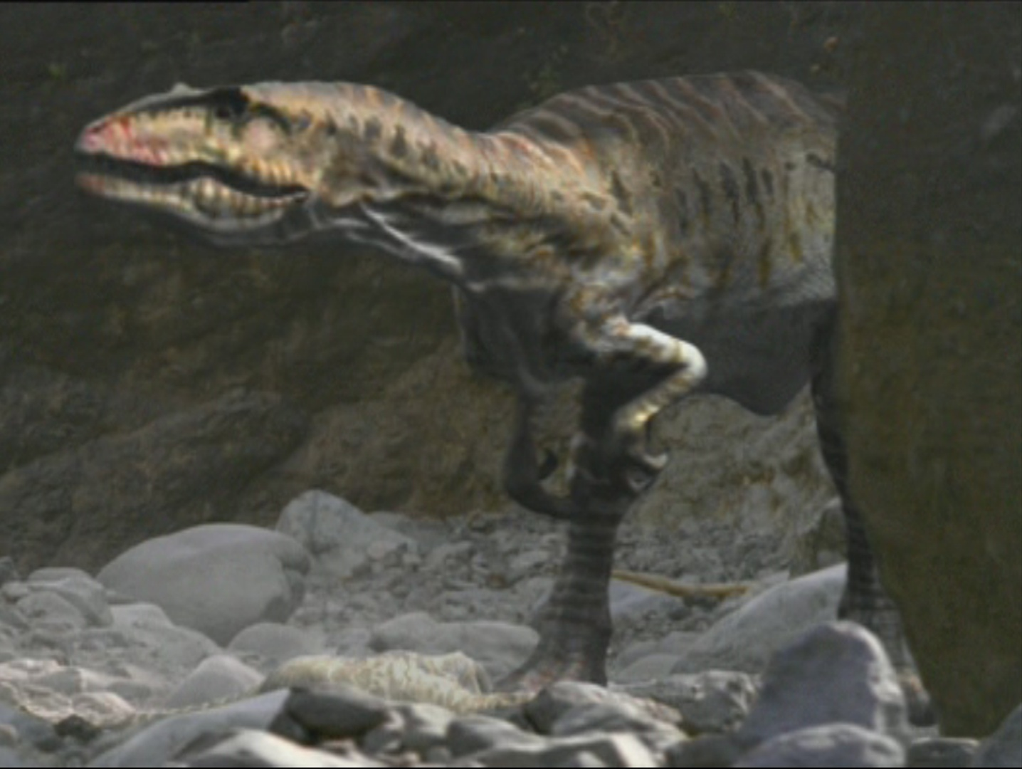Image - Giganotosaurus-wwd-1.jpg | Walking With Wikis ...