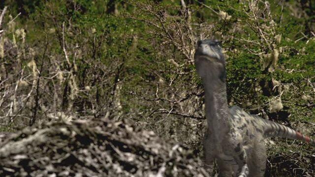 File:Dromaeosaurus-wwd-2.jpg