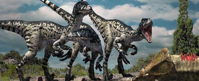 File:Dromaeosaurus-promo.jpg