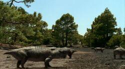 Lystrosaurus gang