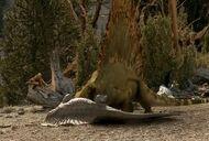 Dimetrodon edaphosaurus