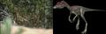 Miscellaneous Coelurosaurs.png