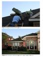 T-Rex Rooftopper print sheet 4.png