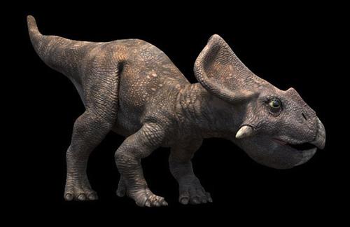 File:Protoceratops rg.jpg
