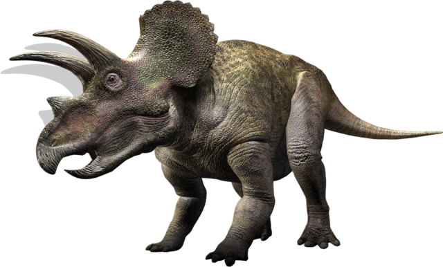File:Triceratops WWD.png