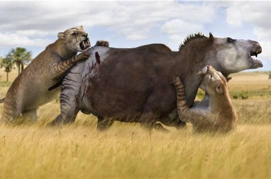 File:Smilodon attack.jpg