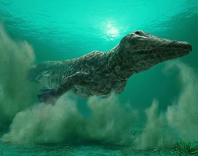 File:Ambulocetus wwb.jpg