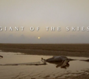 Giant of the Skies