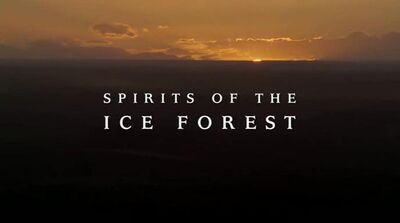 Spirits of the ice forest