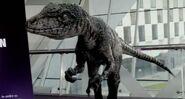 Primeval-Series-5-Velociraptor