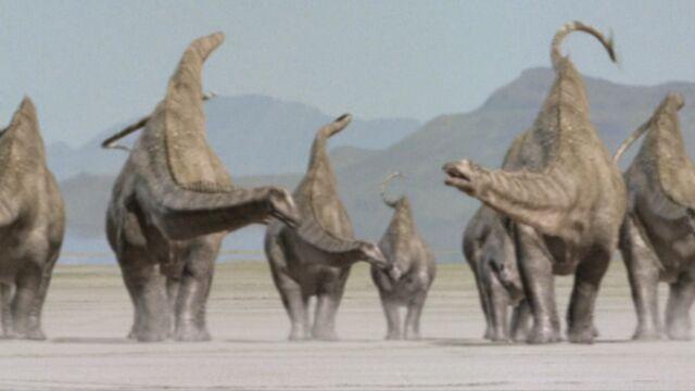 File:Diplodocus-bigal-1.jpg