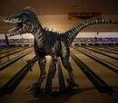 Dromaeosaurus (Primeval)