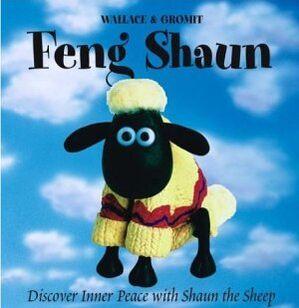 FengShaunBook