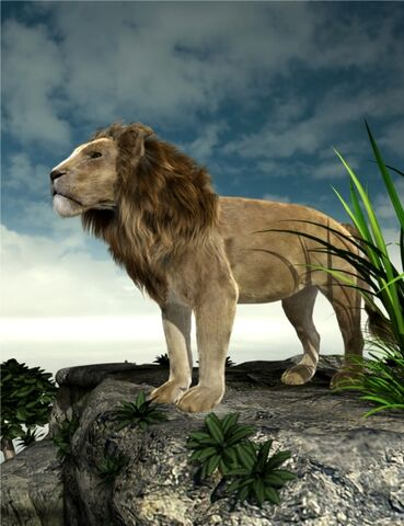 File:LION2.jpg