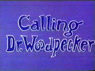 Drwoodpecker-title-1-