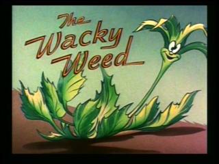 File:Weed-title-1-.jpg