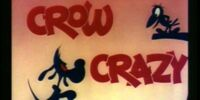 Crow Crazy