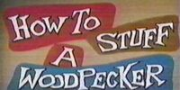 How to Stuff a Woodpecker