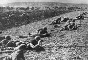 Polish infantry