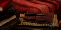 Edgar Allan Poe's Quill Pen and Notebook