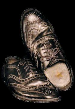 Richard Nixson's Shoes.
