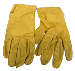 Carey Loftin's Gloves (cut)