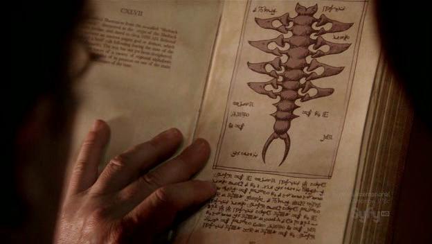 File:Spine (4).png