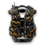 Crown Vest Old