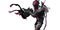 Nidus Collection
