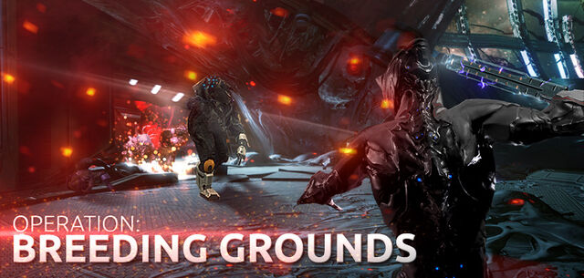 File:Operation Breeding Grounds website.jpg