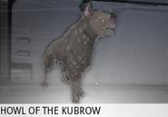 Ritrovamento Kubrow