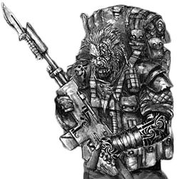Finreht Highlander