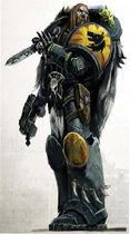 SW Warrior