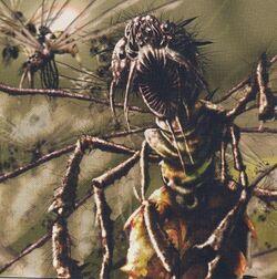 Battleflies