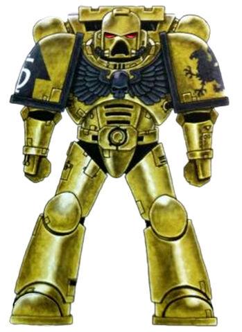 File:Golden Gryphons Battle-Brother.jpg