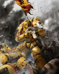Image result for Imperial Fists