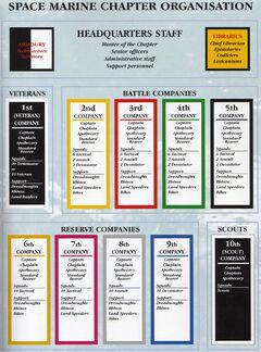 CodexOrganisation.jpg
