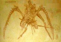 Hierophant - Magos Biologis sketch