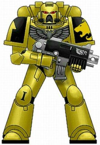 File:Lion Warriors Armor.jpg