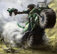 Salamanders Bike Scout Yumochka