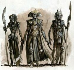 Mortuary Cult of Khemri Nagash