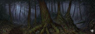 800px-Sombre Forêt