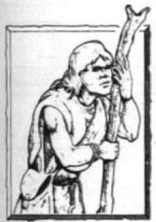 Druidic Priest