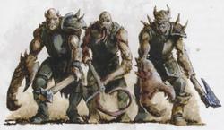 Knights Entropic
