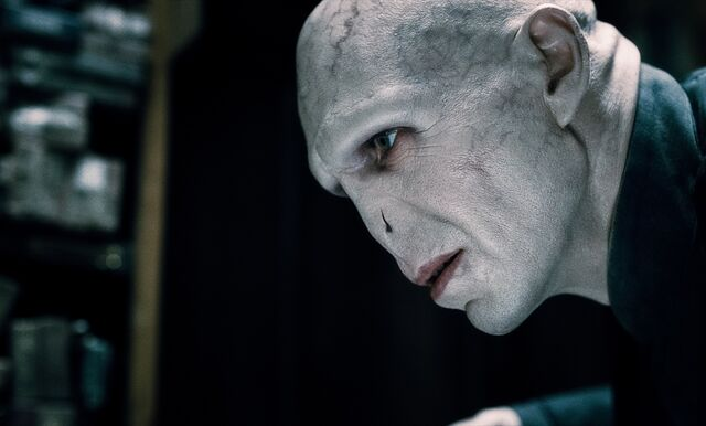 File:Harry-potter-and-the-deathly-hallows-part-1-movie-photo-30.jpg