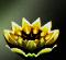 File:Gold Lotus.jpg