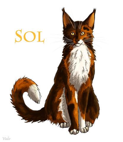 File:Sol by vialir-d6fp2g8.jpg